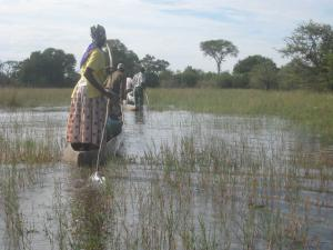 Mokoro canoe safari on the Okavango Delta