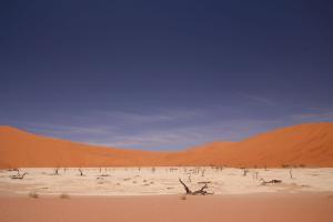 Namibia - Sossusvlei, the Deadvlei