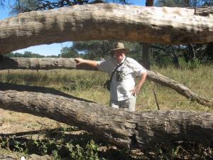 John out on a walking safari at The Hide, Hwange NP