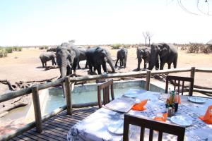 Drinks are served at Nehimba, Hwange NP