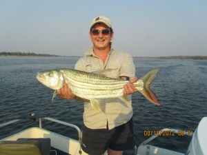 The great tiger fish on the Zambezi